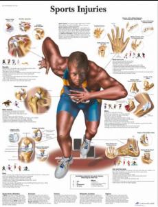 Sports Injuries Chart